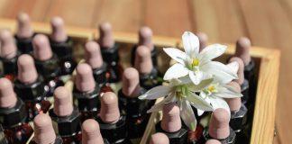 Les fleurs de Bach pour améliorer notre humeur